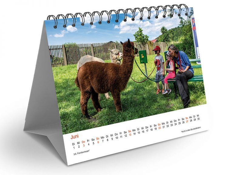 Fotokalender Alpakas 2021